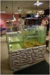Вариант аквариума для торговли живыми растениями.